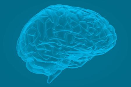Marketing & The Brain